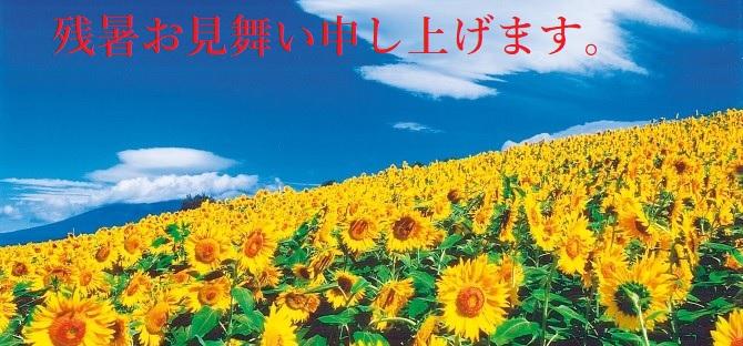 saluto di estate