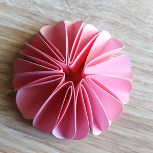 con 8 petali aperti