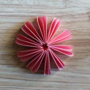 10 petali