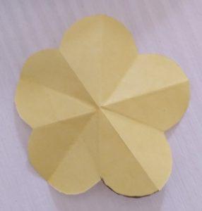 fiore 5 petali aperto