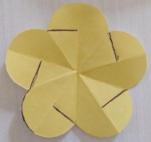 fiore dove taglia