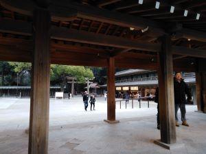 Tempio meiji jingu