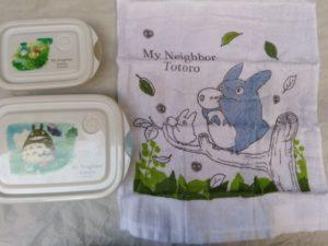 Totoro contenitori e asciugamanino