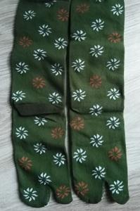 calze infradito disegno Leone