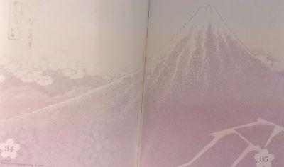Fuji nero di Hokusai sul passaporto giapponese