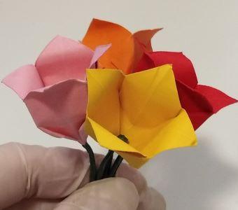 tulipano in origami